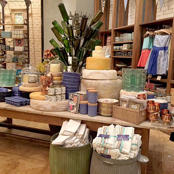 TSM-Anthropologie1
