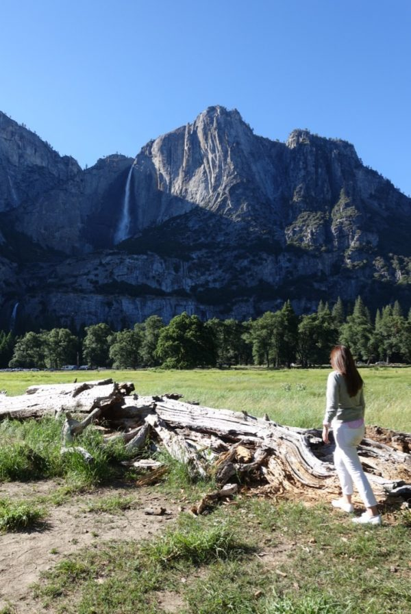 The Spoiled Mummy in Yosemite National Park